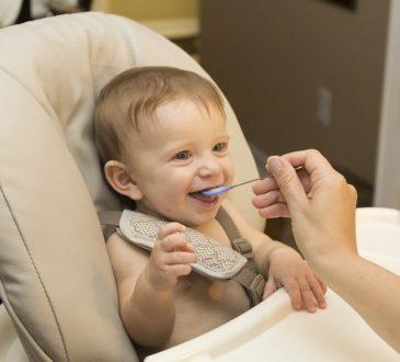 Les aliments riches en fer pour bébé